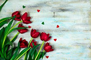 Photo Tulips Boards Heart Template greeting card flower