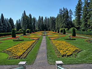 Hintergrundbilder Vereinigte Staaten Parks HDR Design Rasen Strauch Fichten Manito Gardens Spokane Natur