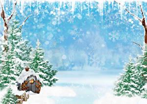 Schnee Bilder 3k Fotos Hintergrundbilder
