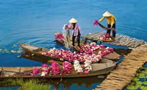 Hintergrundbilder Asiatische Boot Lilien Arbeitet