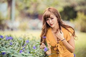 Bilder Asiatische Unscharfer Hintergrund Kleid Dekolletee Hand Braune Haare junge frau