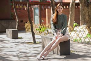 Fotos Asiatisches Unscharfer Hintergrund Sitzt Bein Braunhaarige Niedlich Mädchens