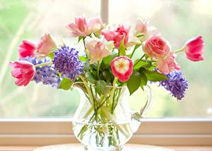 Wallpaper Bouquets Hyacinths Tulip Roses Window Pitcher flower