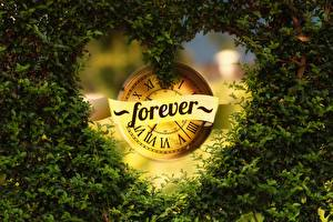 Pictures Clock face Branches Leaf Heart Word - Lettering English FOREVER