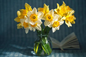 Hintergrundbilder Hautnah Narzissen Vase