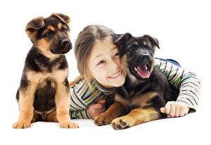 Wallpapers Dog White background Little girls Puppies Staring child
