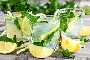 Pictures Drink Lemons Mojito Mentha Highball glass Food