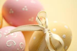 Fotos Ostern Hautnah Schleife Eier