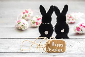 Images Easter Rabbit English Lettering