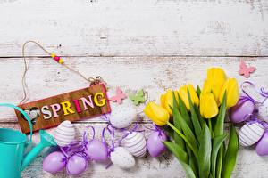 Image Easter Spring Tulip Egg English Text Flowers
