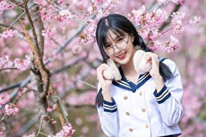 Fotos Blühende Bäume Asiaten Unscharfer Hintergrund Hand Lächeln Niedlich Brünette Brille Starren junge frau