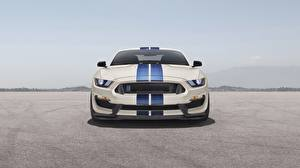Bilder Ford Vorne Strips Mustang Shelby GT350 auto