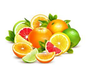 Hintergrundbilder Obst Zitrusfrüchte Grapefruit Limette Zitronen Vektorgrafik Weißer hintergrund