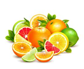 Pictures Fruit Citrus Grapefruit Lime Lemons Vector Graphics White background Food