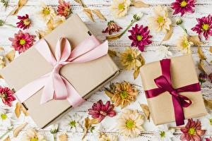 Fotos Geschenke Schleife Schachtel Blüte