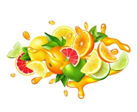 Fotos Fruchtsaft Zitrusfrüchte Limette Zitronen Grapefruit Vektorgrafik Weißer hintergrund Spritzwasser