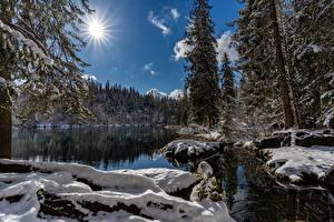 Sfondi desktop Lago Inverno Svizzera Il Sole Neve Lake Cresta Natura