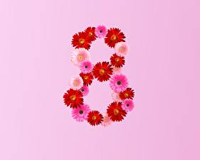 Pictures March 8 Gerberas Pink background