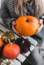 Hintergrundbilder Kürbisse Orange Hand