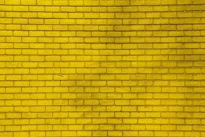 Fondos de Pantalla Textura Amarillo Hecho de ladrillo Flores imágenes