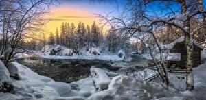 Hintergrundbilder Winter Wälder Fluss Finnland Schnee Bäume Kuusamo, River Kitkajoki Natur