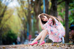 Bilder Asiaten Bokeh Sitzt Kleid Braune Haare Starren Posiert Schöne Mädchens