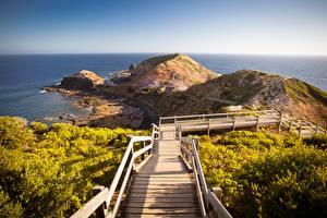 Photo Australia Coast Stairs Hill Cape Schanck Boardwalk Nature