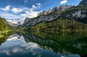 Fotos Österreich Berg See Wald Spiegelt Bäume Alpen Lake Gosau, Upper Austria Natur