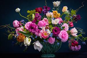 Hintergrundbilder Sträuße Rosen Tulpen Vase  Blumen