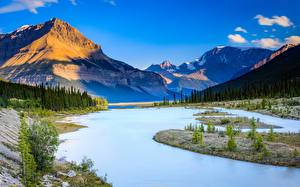 Fotos Kanada Berg Flusse Himmel Landschaftsfotografie Bäume Alberta, Jasper National Park Natur