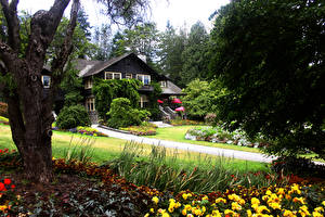 Bilder Kanada Parks Gebäude Vancouver Bäume Strauch Stanley Park Natur