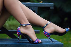Hintergrundbilder Großansicht Bank (Möbel) Bein High Heels Schönes