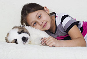 Images Dog Little girls Staring Puppies child