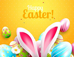 Picture Easter Colored background Lettering English Egg Rabbit ears