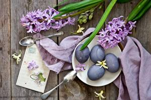 Photo Easter Hyacinths Egg Spoon flower