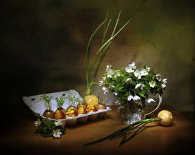 Fotos Ostern Zwiebel Stillleben Windröschen Eier Das Essen Blüte Blumen