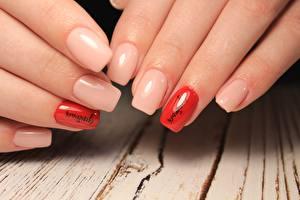 Hintergrundbilder Finger Hautnah Hand Maniküre