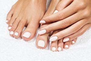 Photo Fingers Closeup Legs Hands Manicure Pedicure White background