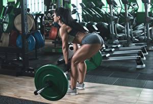 Bilder Fitness Körperliche Aktivität Fitnessstudio Hantelstange Brünette Gesäß Bein Mädchens