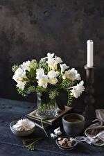 Fotos Freesie Kerzen Zefir Kaffee Vase Weiß Becher Zucker Blüte