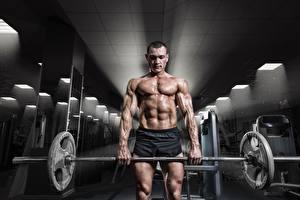 Bilder Mann Körperliche Aktivität Fitnessstudio Muskeln Hantelstange
