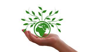 Bureaubladachtergronden Planeet Planten Hand Aarde Witte achtergrond