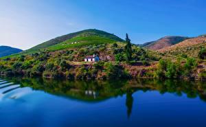 Fotos Portugal Fluss Felder Hügel Bäume Spiegelung Spiegelbild Douro River Natur