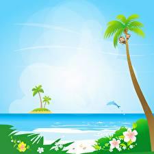 Hintergrundbilder Meer Vektorgrafik Palmen Sonne