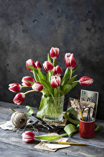 Pictures Still-life Tulips Wood planks Vase Flowers