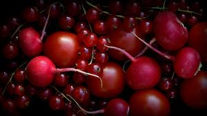 Photo Tomatoes Currant Radishes Red