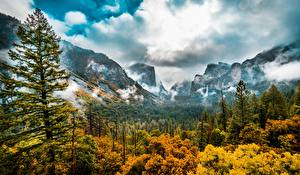 Images USA Forest Autumn Landscape photography Trees Yosemite Clouds California Valley Sierra Nevada Nature