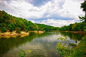 Hintergrundbilder Vereinigte Staaten Fluss Wald Columbia Maryland Natur