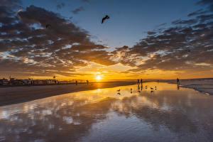 Hintergrundbilder Vereinigte Staaten Morgendämmerung und Sonnenuntergang Küste Himmel Kalifornien Wolke Sonne Newport Beach Natur