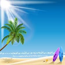 Fotos Vektorgrafik Meer Sonne Strände Palmengewächse